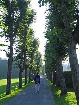 [path]