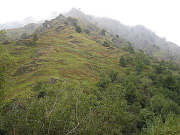 [green slopes]