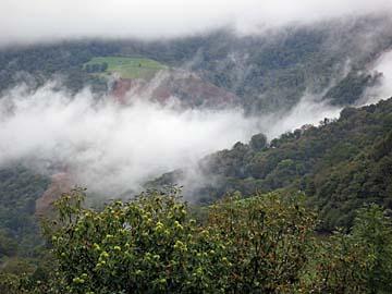 [misty hills]