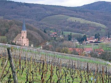 [andlau church & vineyard]